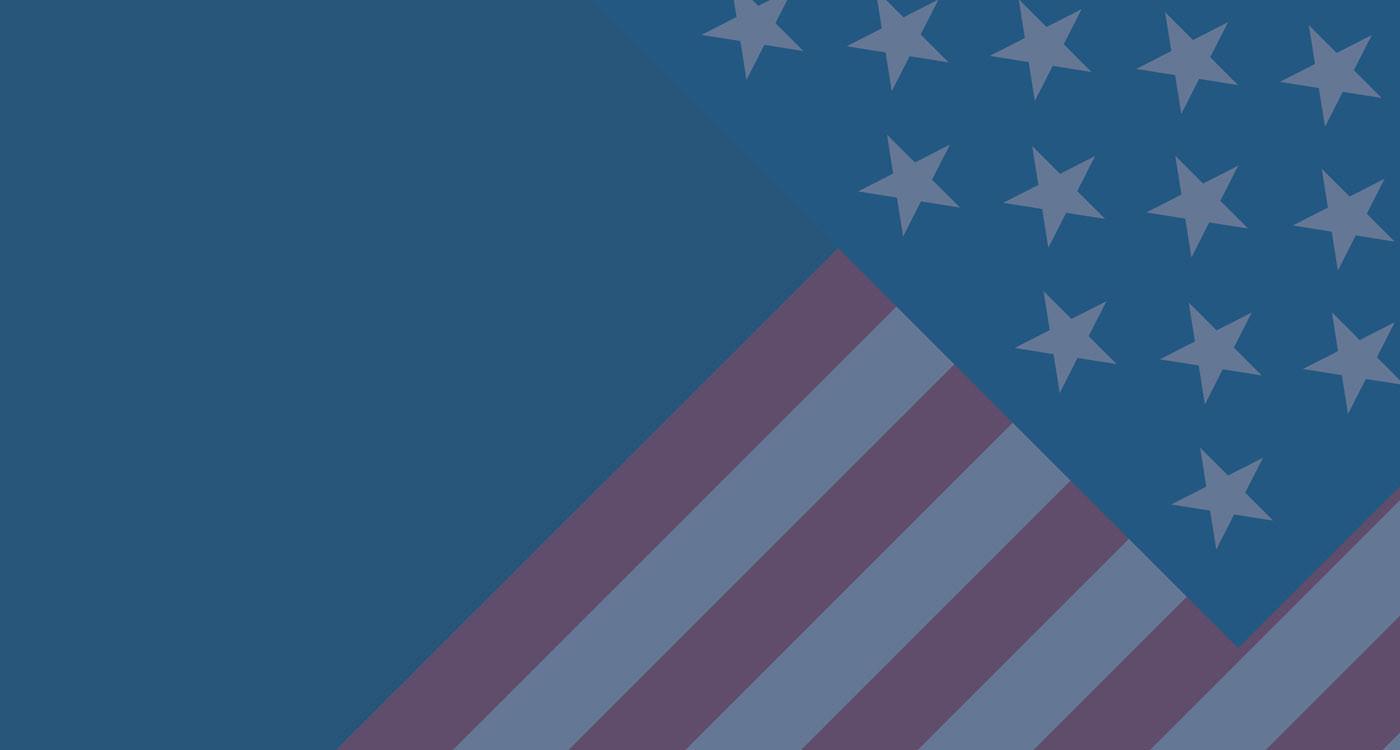 Webinar: US Presidential Elections 2020