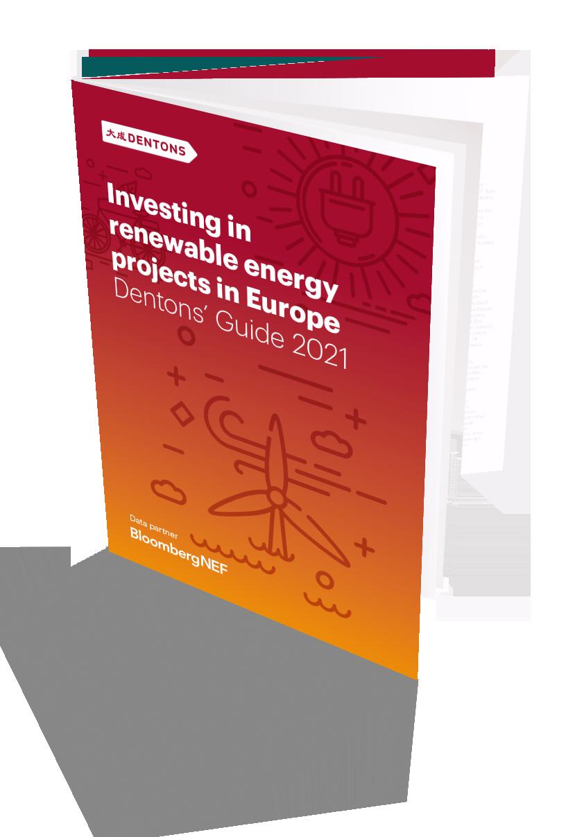 Brand-49160-2021 Renewables brochure Mock-up_high resolution.png