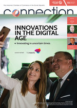 2021-2 / Innovation in the Digital Age